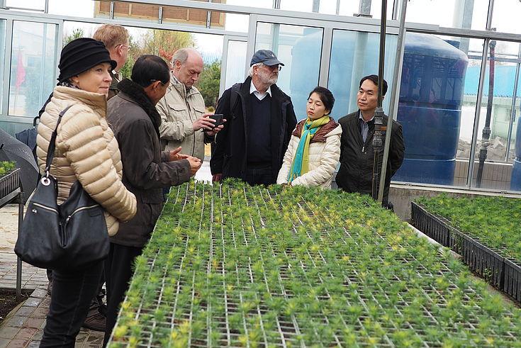 Besichtigung eines Gebäudes der Baumschule in Pyongyang