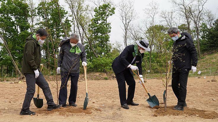 나무심기 – 한반도의 평화 및 기후 발전을 위한 활동