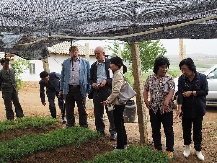 Während einer Vor-Ort-Inspektion besuchten das Food Security Büro der EU, Repräsentanten der HSS und lokale Projektpartner die Aufforstungs-Station in Sangseo-ri.