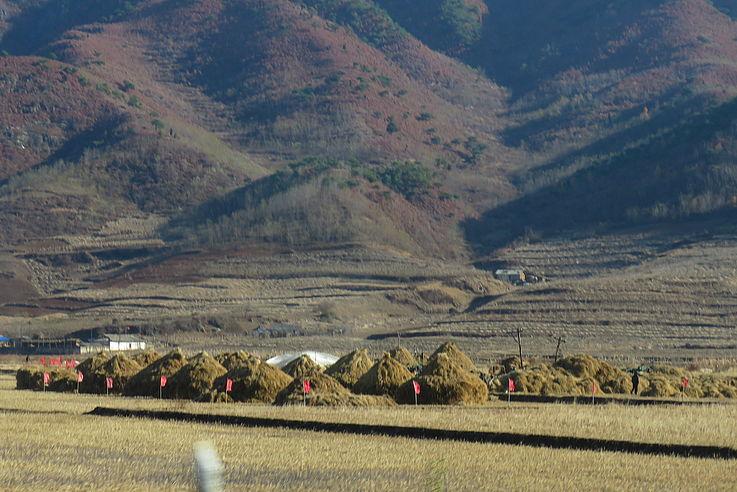 Lager der diesjährigen Ernte in der Nähe von Wonsan