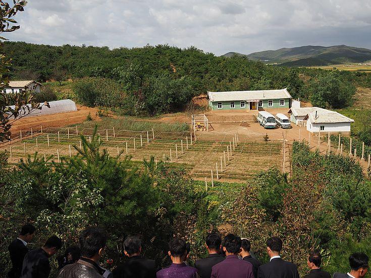 Zum Ende des Projektes konnten über 100 Hektar bei der Aufforstungs-Station in Sangseo-ri wieder erforstet werden.