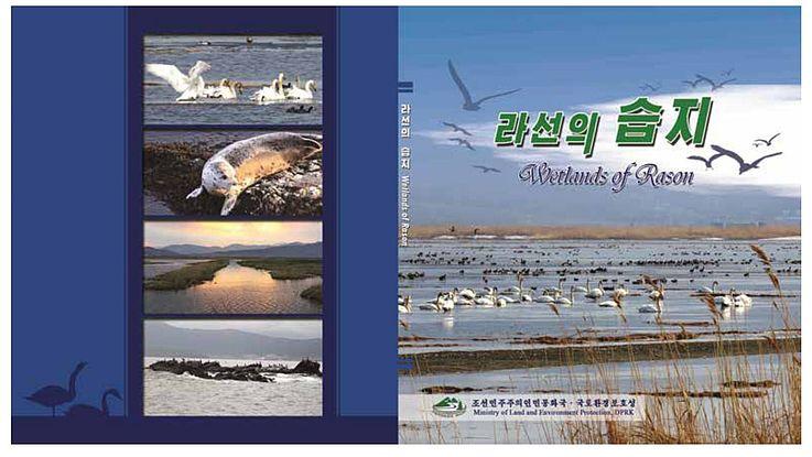 Zugvögel, Natur und Umweltschutz im Rason Feuchtbiotop