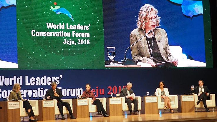 Discussion at World Leaders Conservation Forum