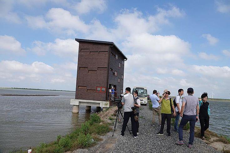 Volgelbeobachtung an der Jangtse-Mündung
